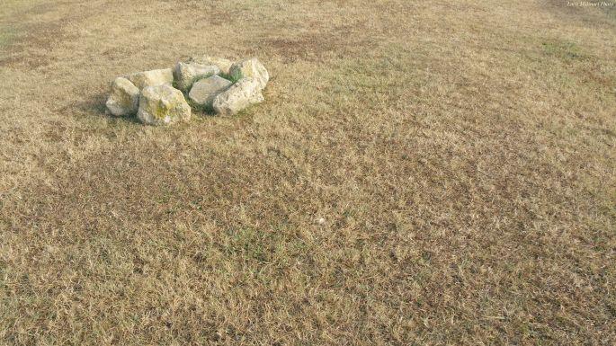 Luca Molinari Photo Etiliyle - circle in the grass