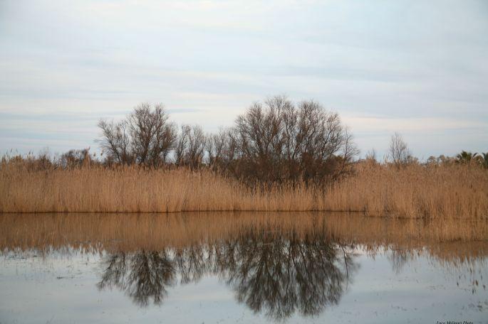 "etiliyle.wordpress.com - Luca Molinari Photo - Etiliyle - Blog-fotografia-pictures-poem-poems-poetry-poesy-pics-art-images-screenshot-share-Canon Eos 5D ""water - mirror - three"