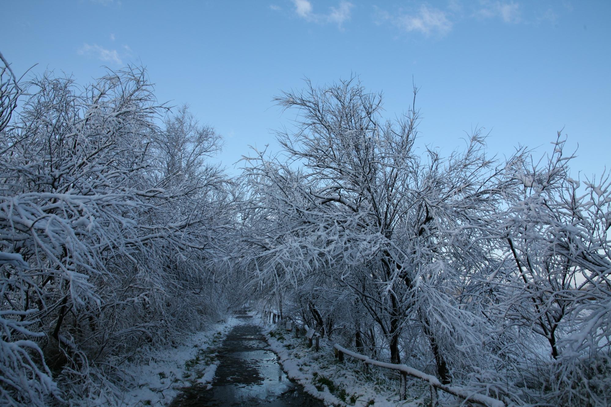 https://etiliyle.files.wordpress.com/2018/02/etiliyle-wordpress-com-luca-molinari-photo-etiliyle-blog-fotografia-pictures-poem-poems-poetry-poesy-pics-art-images-screenshot-share-e2809csnow-cold-winter-white-canon-eos-5.jpg?w=2000
