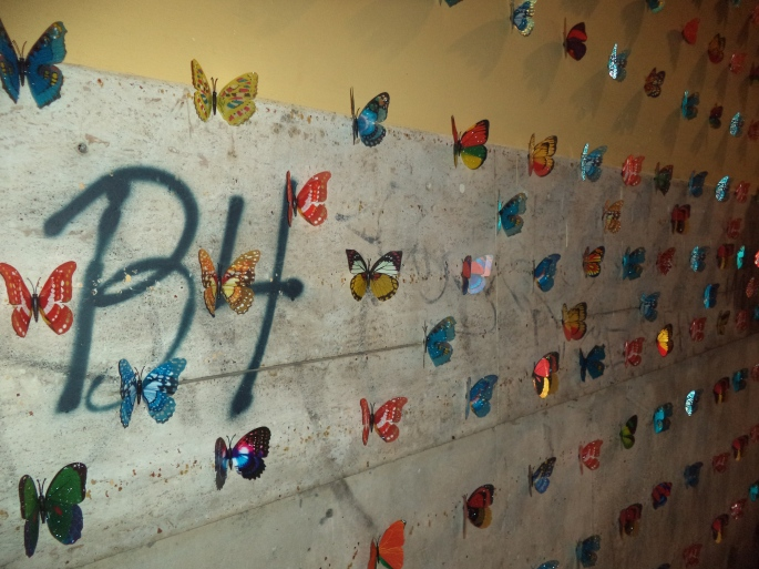 Etiliyle-Luca Molinari photo- farfalle