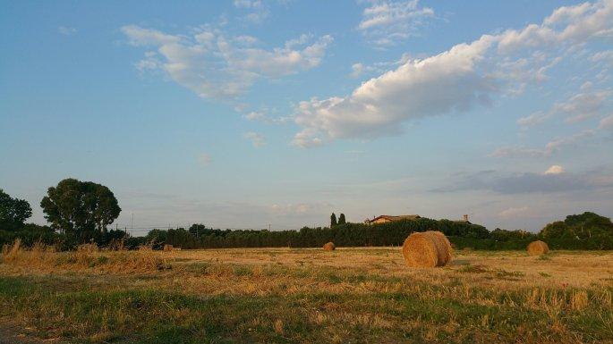 etiliyle-luca molinari photo-natura al tramonto236468660..jpeg